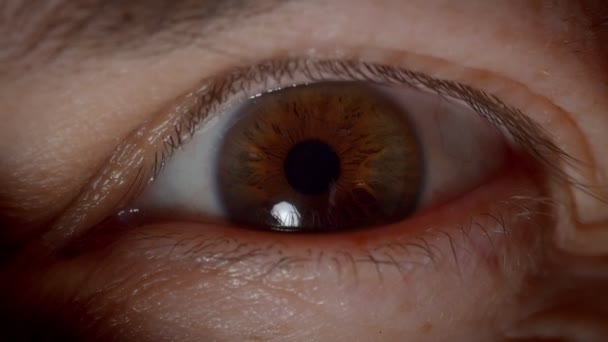 Close-up shoot of caucasian person with brown eyes blinking and watching peacefully into camera in darkness.