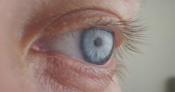 Nahaufnahme eines schönen blauen menschlichen Auges mit detaillierten Wimpern, die in die Kamera schauen