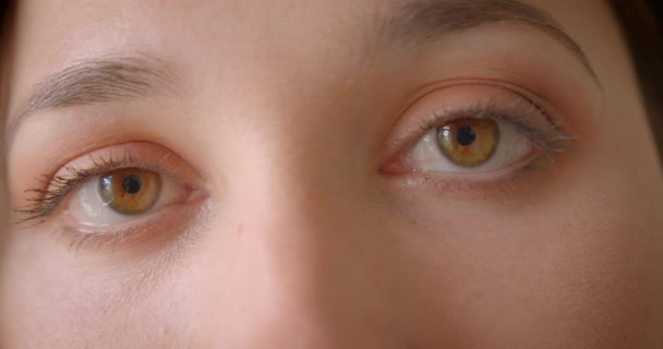 Closeup portrét mladého, bělošského ženského obličeje s očima, které blikají z kamery