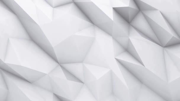 3D animáció - fehér alacsony poly textúra