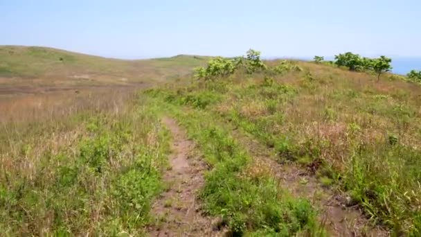 Beautiful landscape. Dirt road on top of a green hill