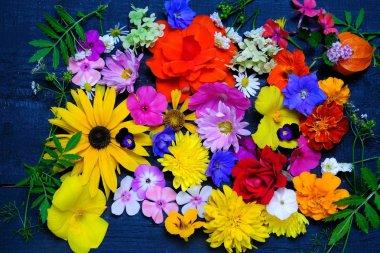 Texture of various garden flowers, top view.