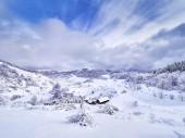 beautiful winter mountain landscape, Fundatura Ponorului, Hunedoara county, Romania