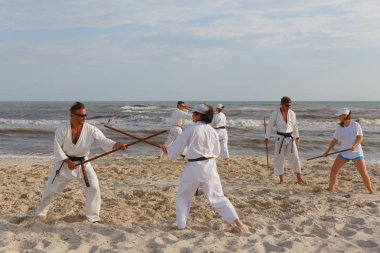 A group of sportsmen are training in karate at the sea shore