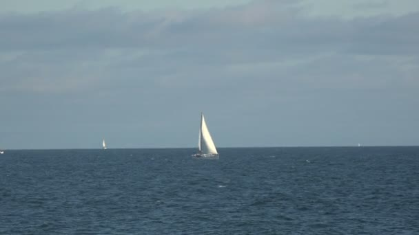Bílé plachetnice v Tichém oceánu za krásného letního dne
