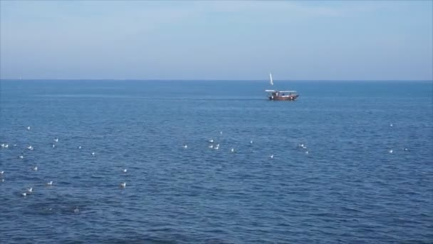 Letní čas turistické Motor Boat Ride Beach View Černé moře, Rumunsko