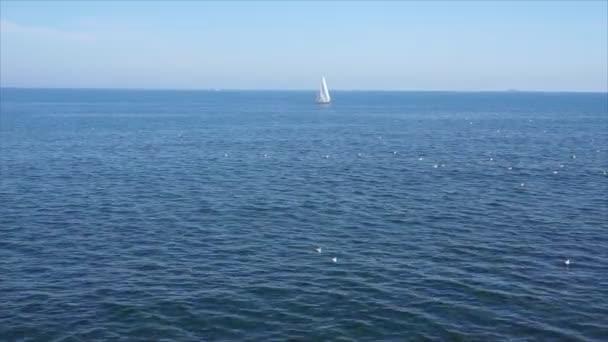 Plachetnice na obzoru v krásném černém moři