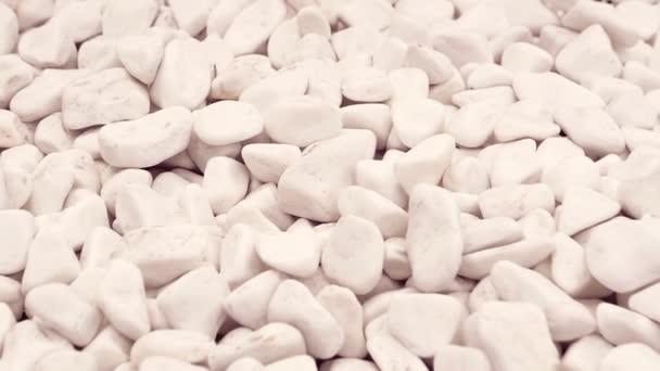Garden Fifteen Stones White Gravel U2014 Stock Video