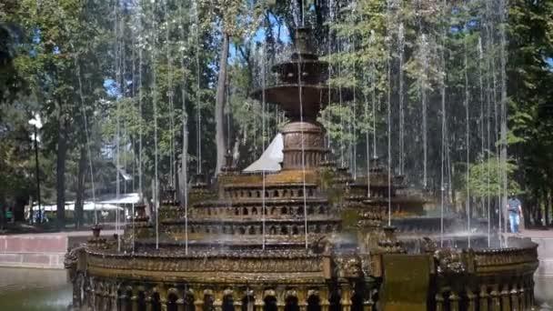 Schöner Brunnen im Stadtpark, barocke Architektur. Steadicam-Shooting