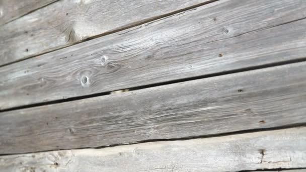 Skutečné staré dřevo textury Vintage pozadí. Světlé pozadí. Kamera se pohybuje zleva doprava.