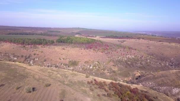 Flight over autumn hill.