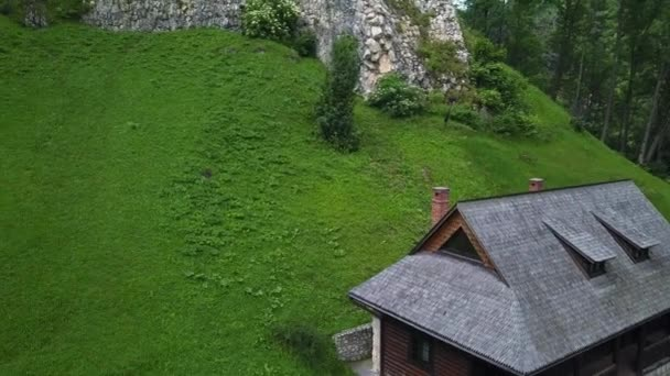Veduta aerea del castello di Bran, luogo mistico, castello medievale, noto anche come castello di Dracula, a Brasov, Transilvania