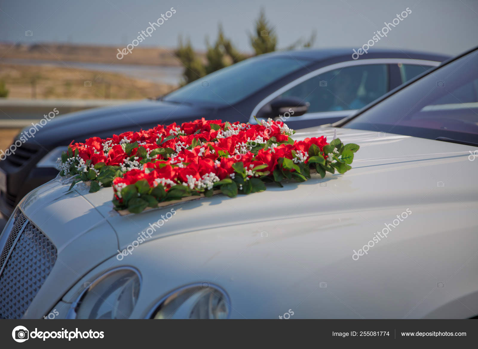 Closeup Image Of Wedding Car Decoration With Red And White Flowers Bouquet Stock Editorial Photo C Fotoqraf Tk Mail Ru 255081774