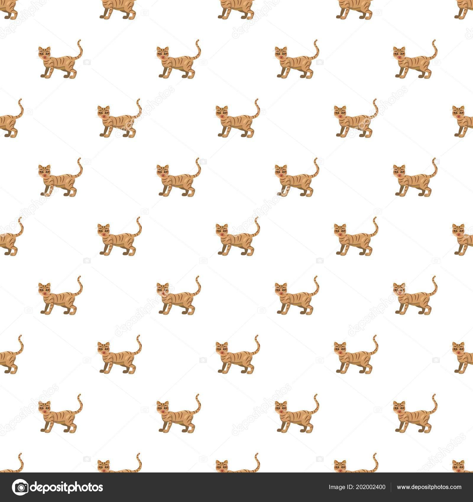 modelo del gato sin costuras — Archivo Imágenes Vectoriales ...