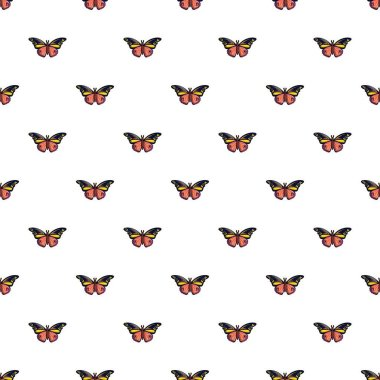 Wandered butterfly pattern seamless