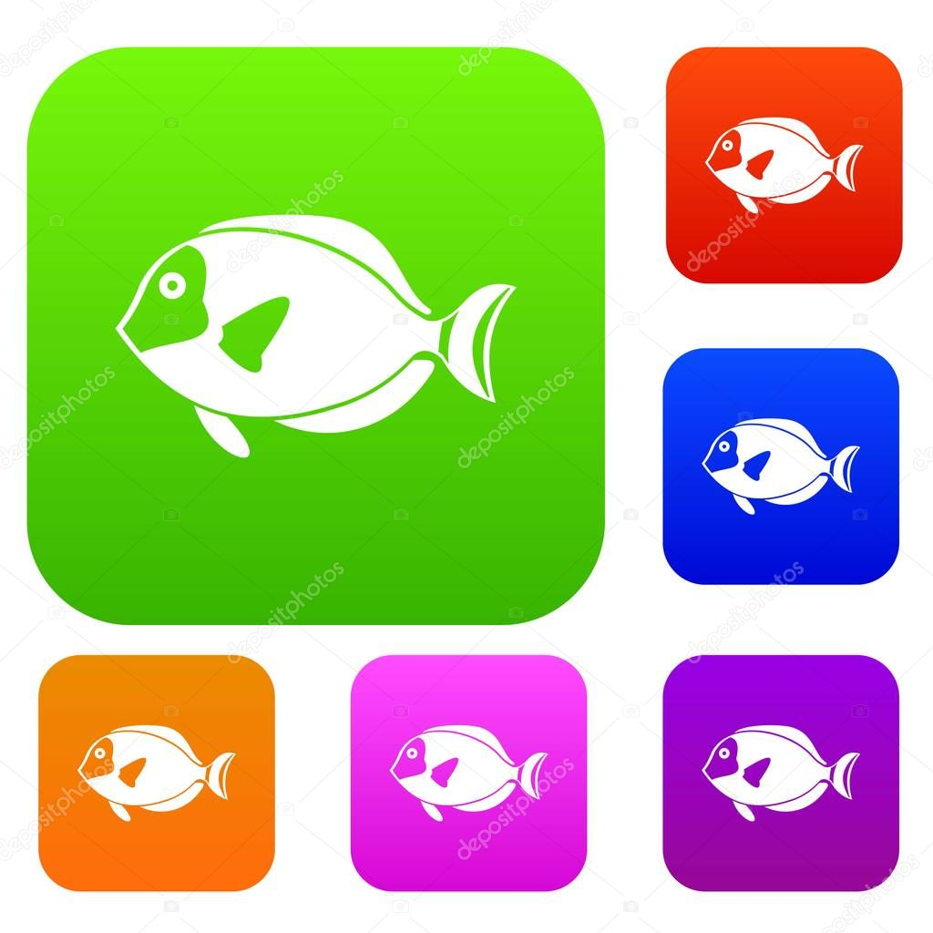 Surgeon fish set collection