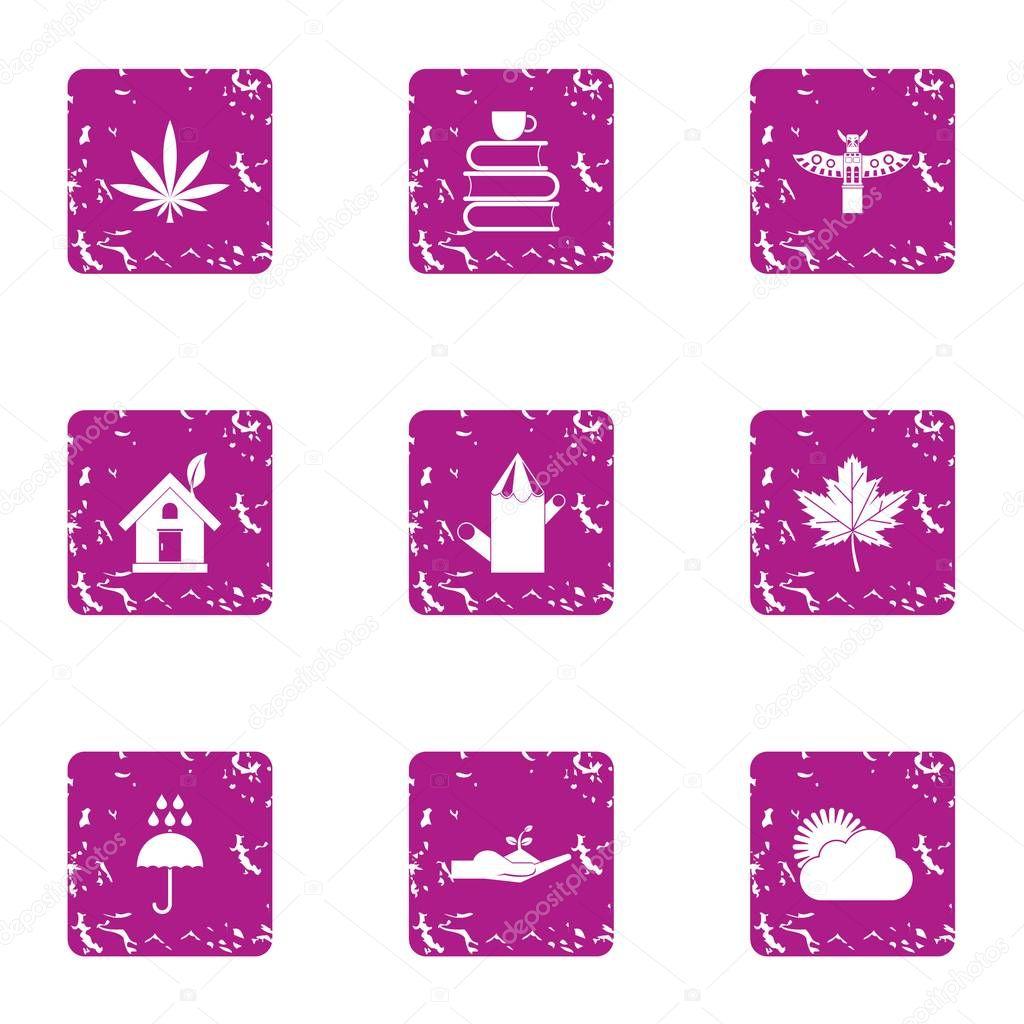 Economic knowledge icons set, grunge style