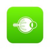 Fotografia Verde digitale icona di bulbo oculare umano