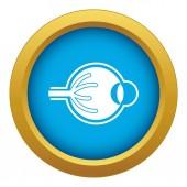 Fotografia Vettore di icona blu bulbo oculare umano isolato