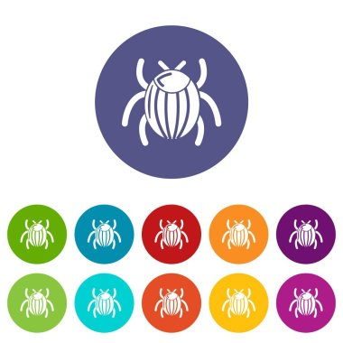 Garden beetle bug icons set vector color