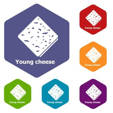 Young cheese icons vector hexahedron