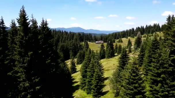 Aerial close-up view of woods in Bulgarian mountains.