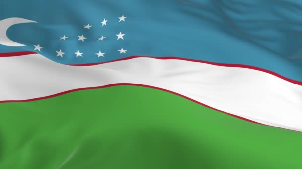 waving in the wind looped flag as a background Uzbekistan