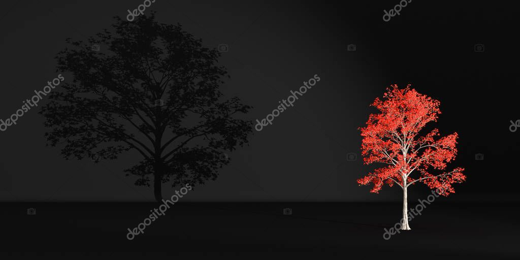 red tree casts a shadow on a dark wall, 3d illustration