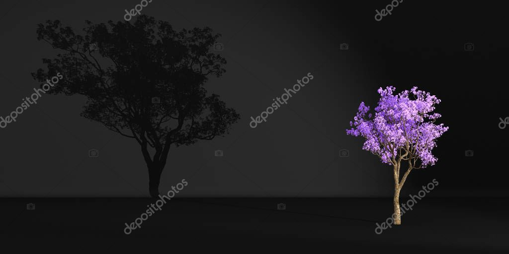 purple tree casts a shadow on a dark wall, 3d illustration