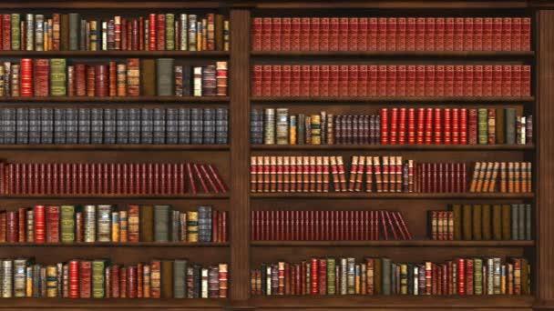 Pohyb fotoaparátu ve staré knihovně, 3D animace