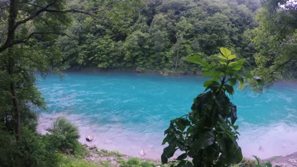 Beautiful Turquoise Mountain River. Amazing Turquoise Mountain River Among Wooded Shores.