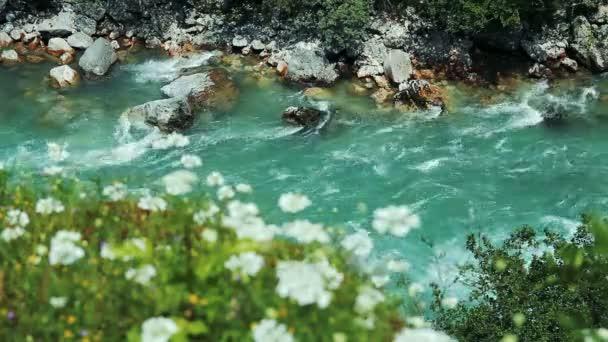 Hluboký kaňon řeky Tara Mountain. Tyrkysové Rapids víří kolem balvanů v proudu panenské řeky