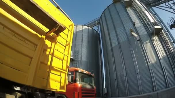 Semi-Trailer Truck Delivers Grain To Grain Elevator  Grain Storage Bins and  Grain Truck During the Harvest