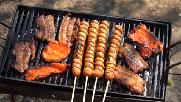 Assorted Meat on BBQ Grill. Juicy Slices Of Meat On A Grill. Barbecue With Delicious Grilled Meat and Vegetables On Grill. Barbecue Party.Chicken and Pork Meat Pieces Being Roasted on a Charcoal Grill.