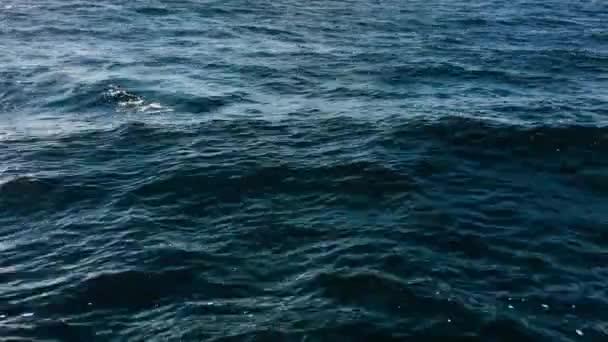 Povrch vlnící se temně modré mořské vody.