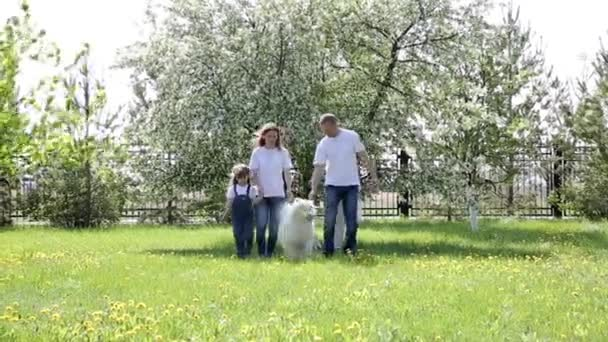 A family of three walks with a large dog in the park. Dad, mom with daughter and a domestic dog spend a day off in the city park.