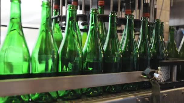 Bierbrauprozess. Förderband mit Flaschen in Brauerei
