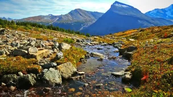 Rocky mountains s říčkou