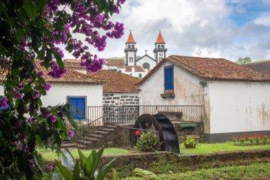 Dona Beatriz do Canto park in Furnas town, Sao Miguel island, Az