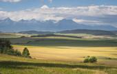 Scénický pohled na krásnou krajinu na Slovensku. Louka a les u Slovenského ráje s výhledem na Tatry v pozadí. Okouzlující a klidná scéna