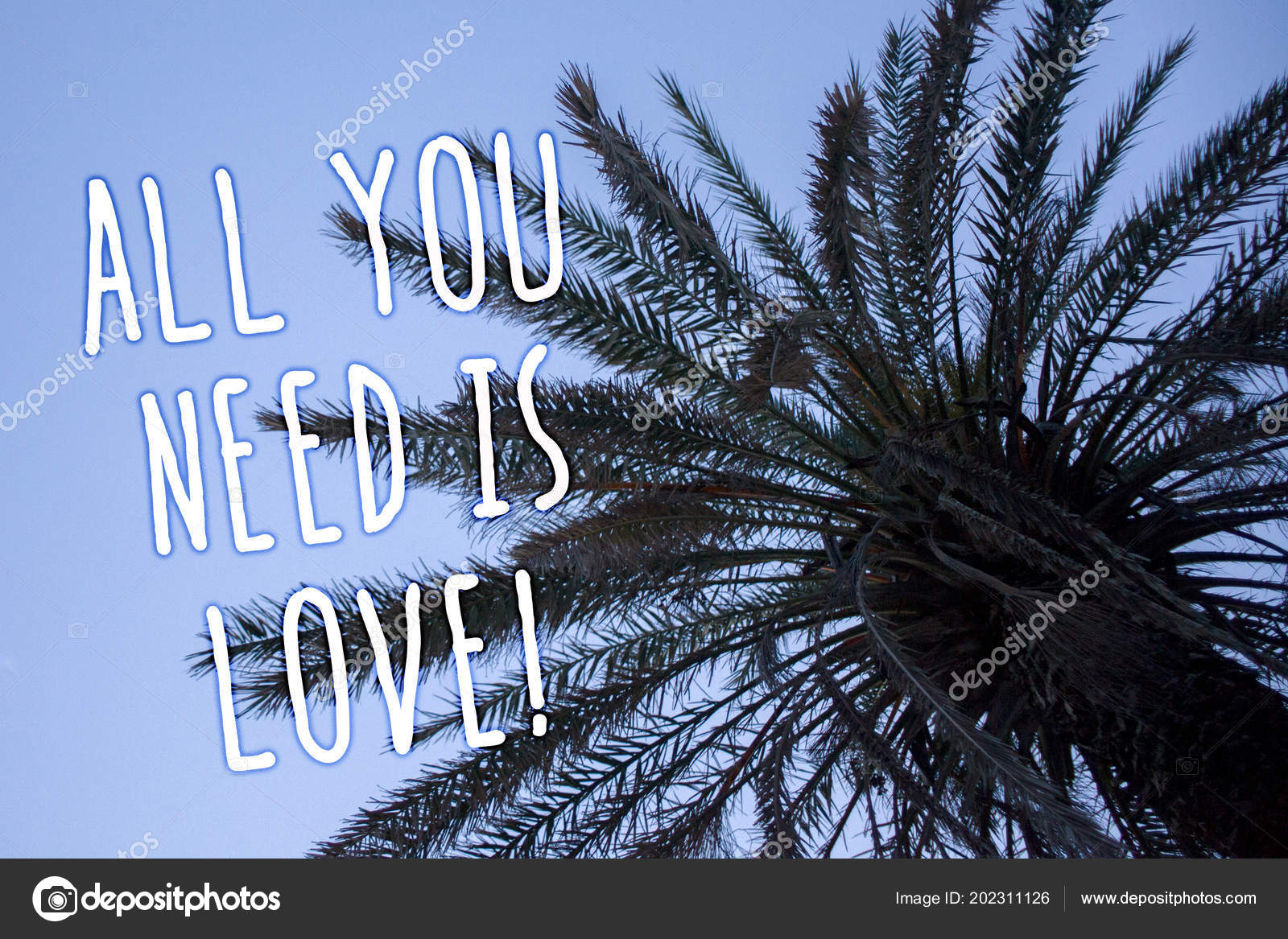 Texto Letra Todos Você Precisa Amor Motivacional Afeição