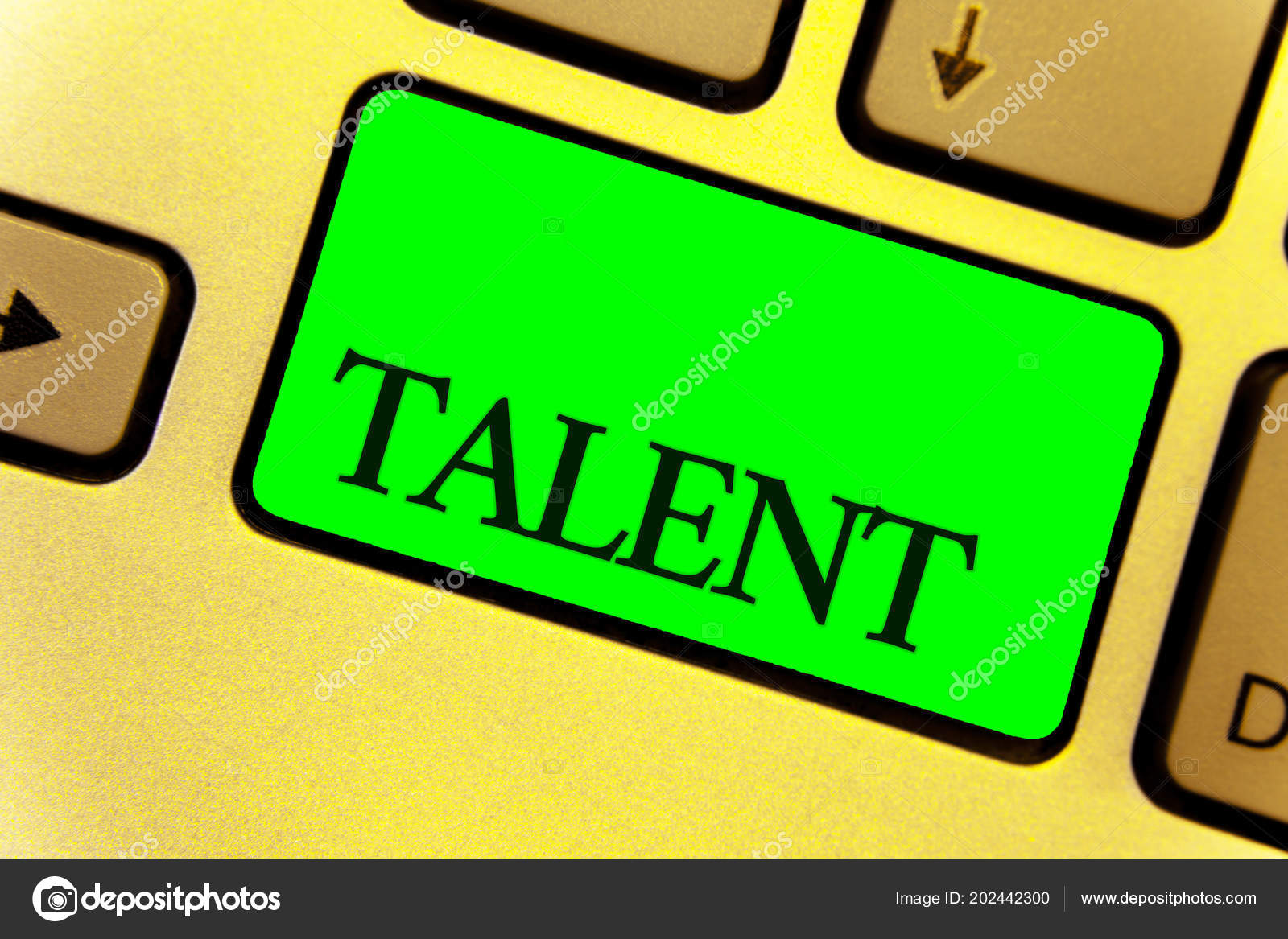 Text Sign Showing Talent Conceptual Photo Natural Abilities People