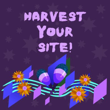 Writing note showing Harvest Your Site. Business photo showcasing time when you reap what you sow before pick or gather it Colorful Instrument Maracas Handmade Flowers and Curved Musical Staff.