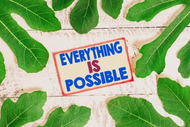 Text sign showing Everything Is Possible. Conceptual photo Any outcome could occur Anything can happen.