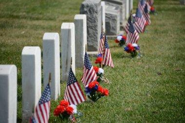 Fort Rosecrans National Cemetery at daytime stock vector