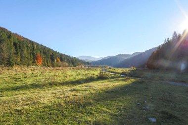 mountains, landscape, forest,river