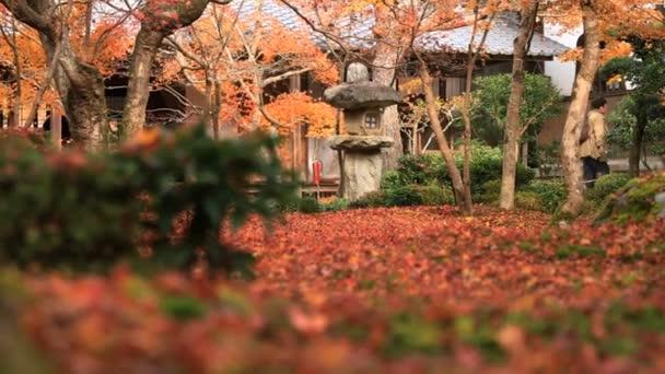 Červené listy na tradiční park v Enkouji chrámu v okrese Sakyo Kjóto zavřete shot handhld