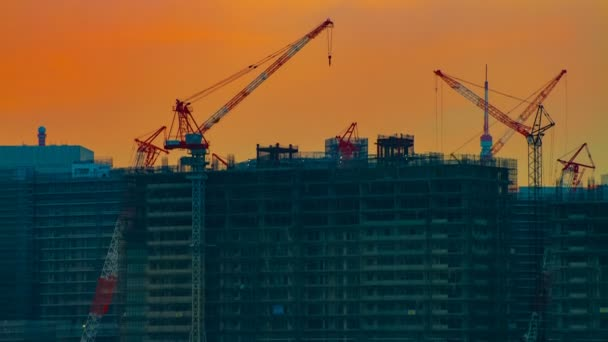 A time lapse of moving cranes at the bay area in Tokyo at dusk wide shot