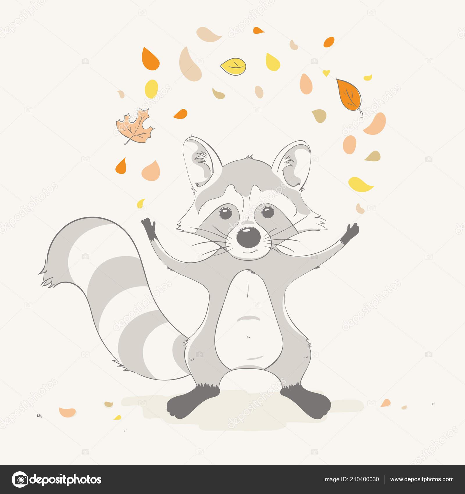 Garçon Raccoon Mignon Beau Jeter Les Feuilles Automne