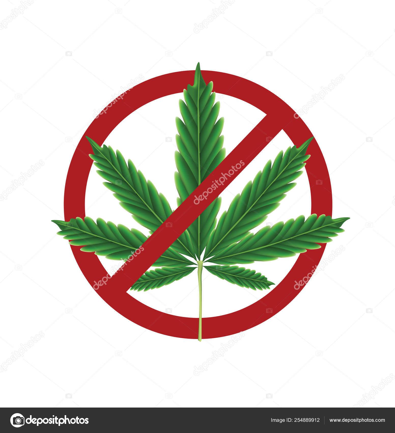 Марихуана запрещена как и где купить семена конопляные